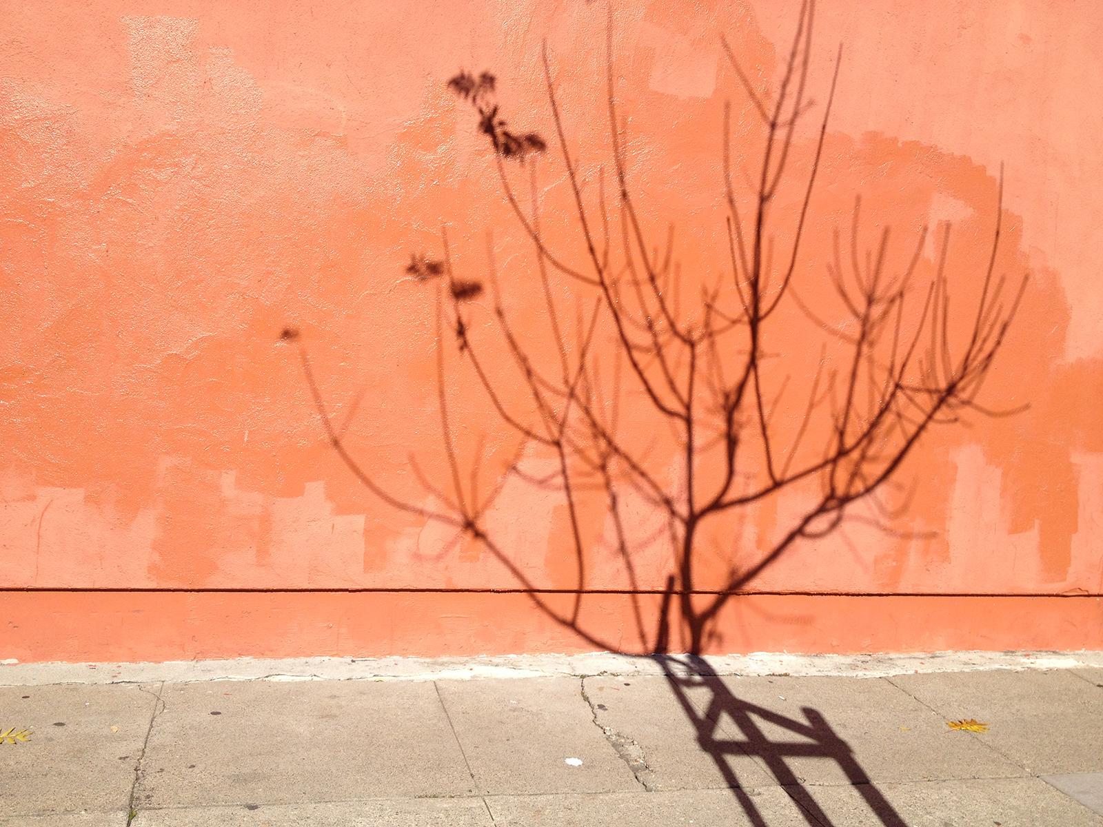 naturesgraffiti