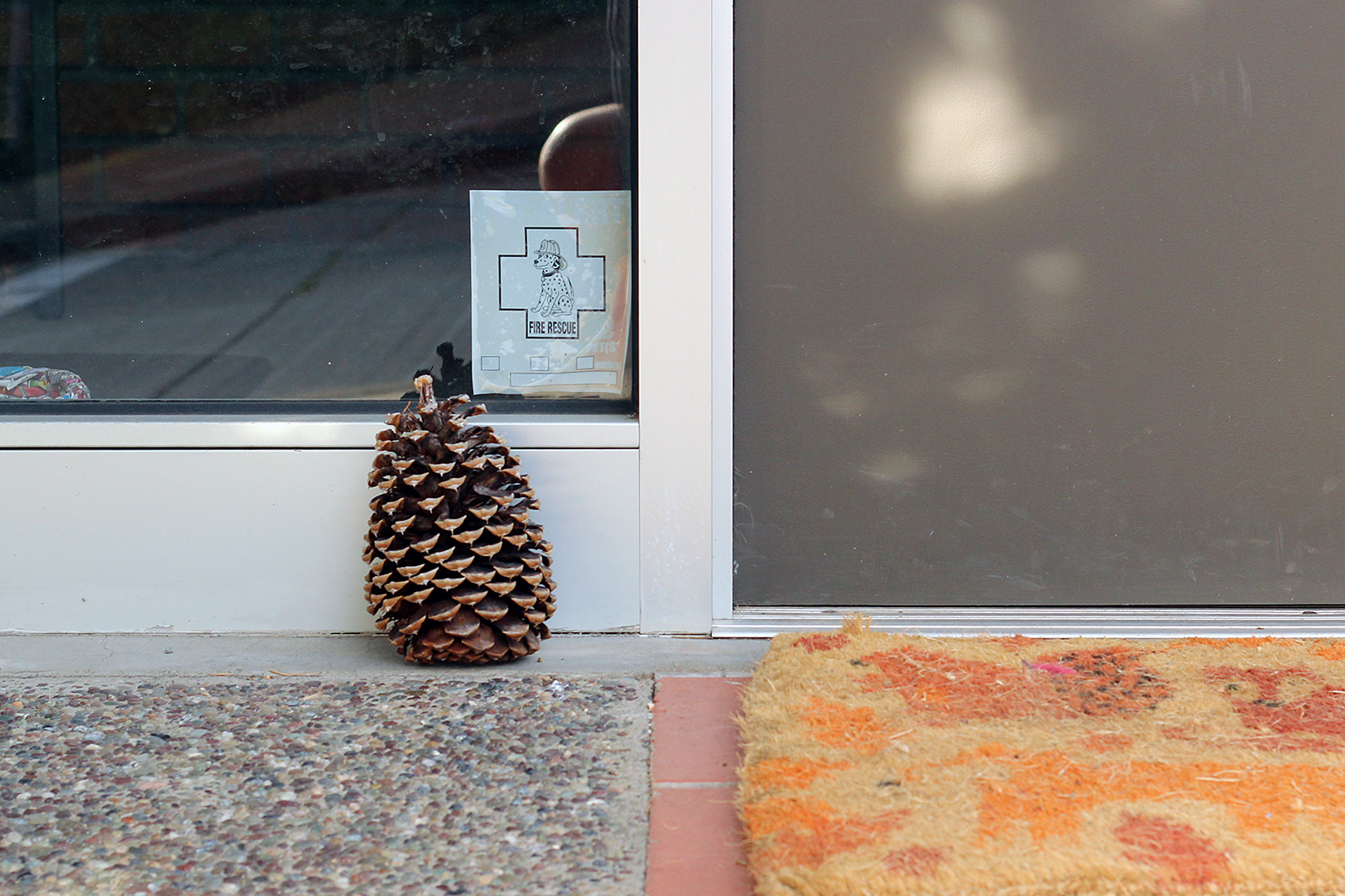 A Pine Cone sits outside someone's house