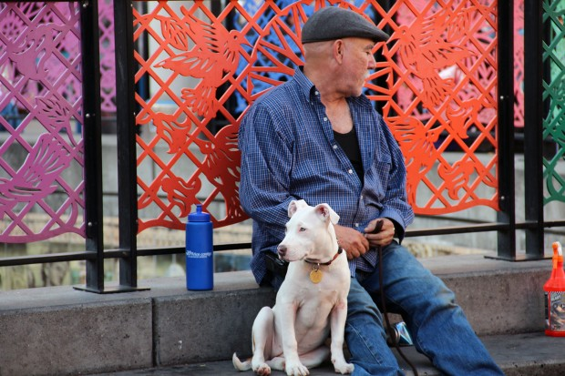A man sits with his dog at the 16th Street Bart Station.