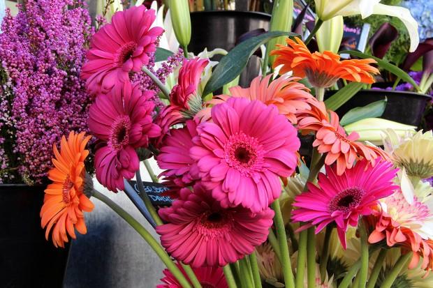 Flowers outside BiRite on 18th Street.