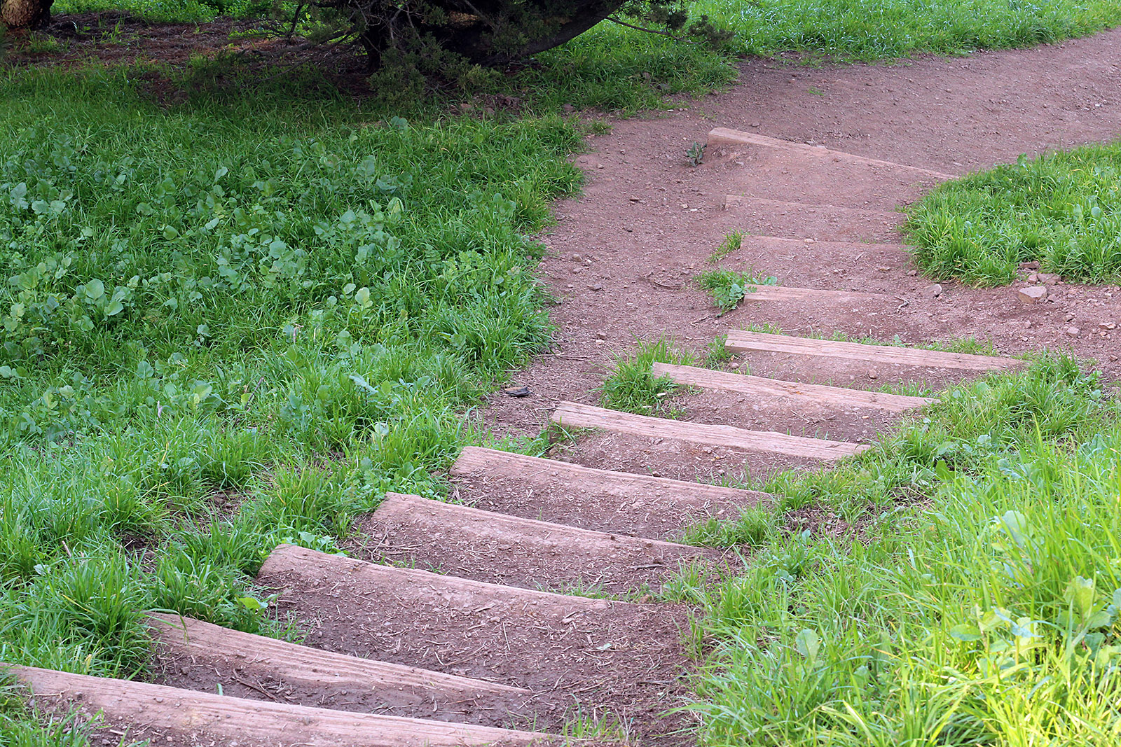 The path from Bernal Heights into the Mission.
