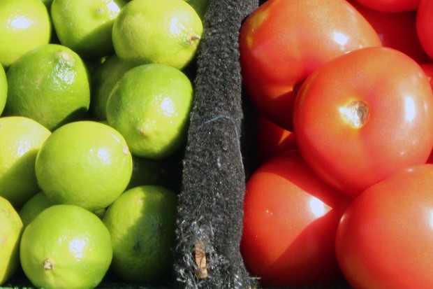 Tomatoes and limes in the sun on Mission Street.