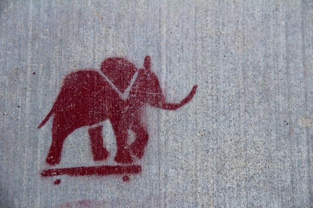 An elephant cruises down Folsom Street on his skateboard.
