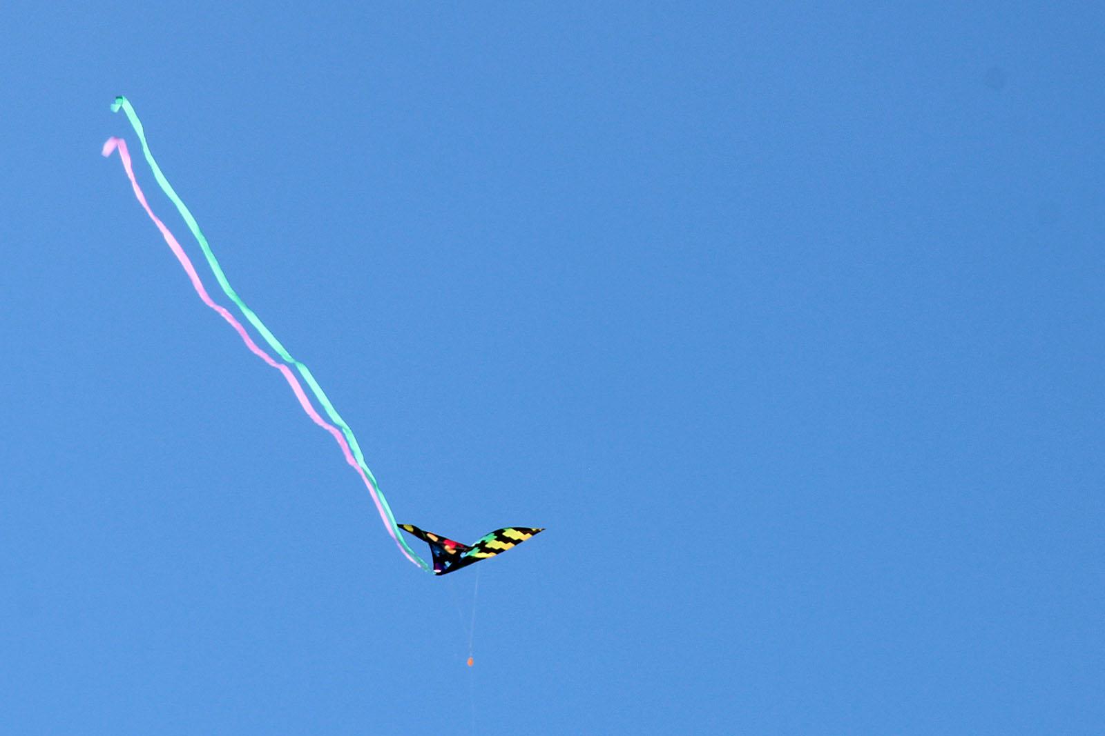 SNAP: Blue Skies and Kites