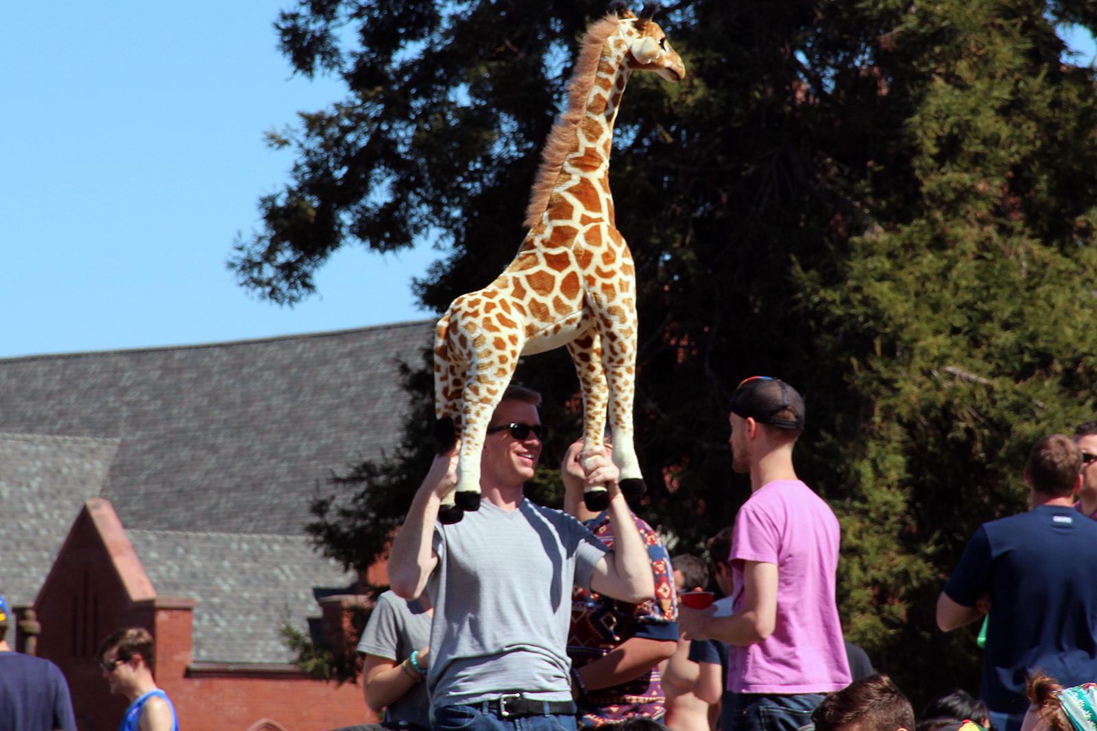 SNAP: Giraffe Sighting