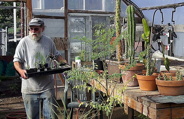 Dennis Rubenstein, the founder of The Free Farm known as Tree, moves plants out of the farm's greenhouse on Wednesday.  The farm is being forced to move out of the lot on Eddy and Gough Streets to make way for a church and a new affordable housing development.