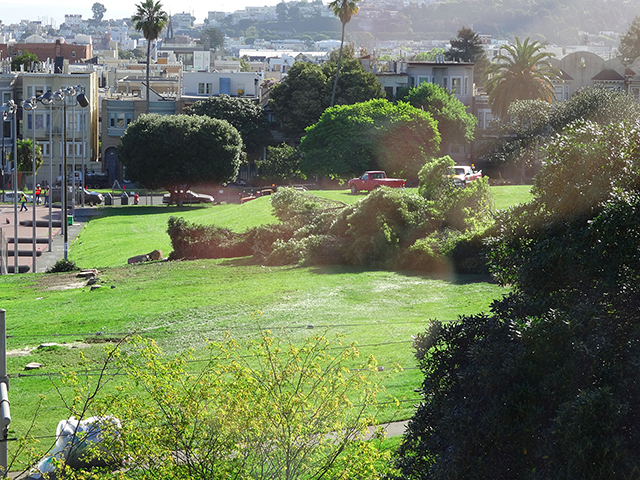 "Mission Dolores residents tired of trash and homeless encampments, explore forming a ""green benefit district"""