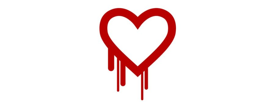 Privacy Files: NSA Knew About Heartbleed