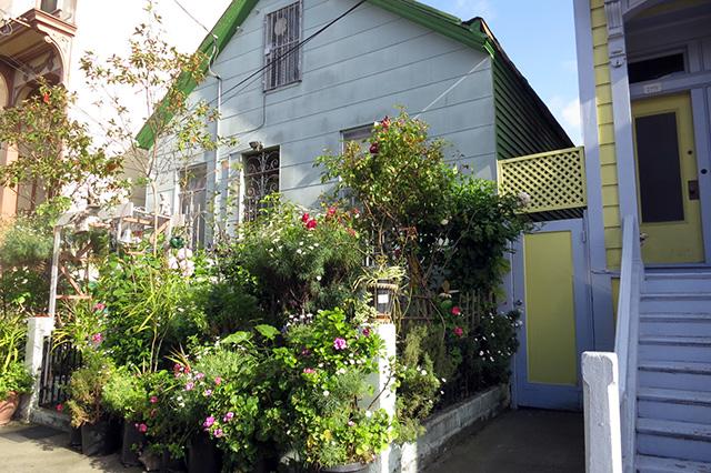 SNAP: Gussy Garden