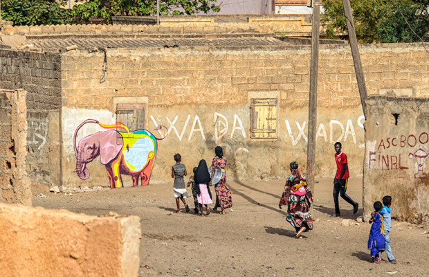 Wall #3: In the neighborhood behind the Toll Highway, people find an elephant. Image by South African artist Falko.