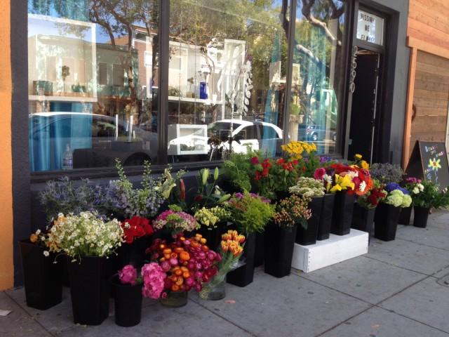 SNAP: Mission de Flores