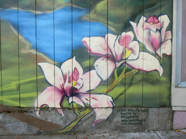 SNAP: Precita Eyes Orchids