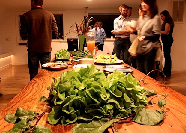 Aquaponic greens at Perennial preview event. Photo by Daniel Hirsch.