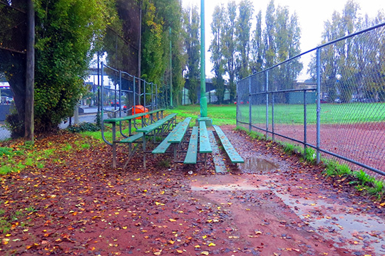 Good Morning Mission!  Fields and Courts
