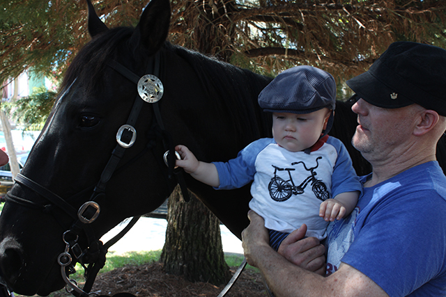 Tommy, held by his father Bill Stone, examines his favorite police horse, Bubba. Photo by Laura Wenus