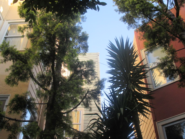 In between buildings Photo by Kathleen Narruhn