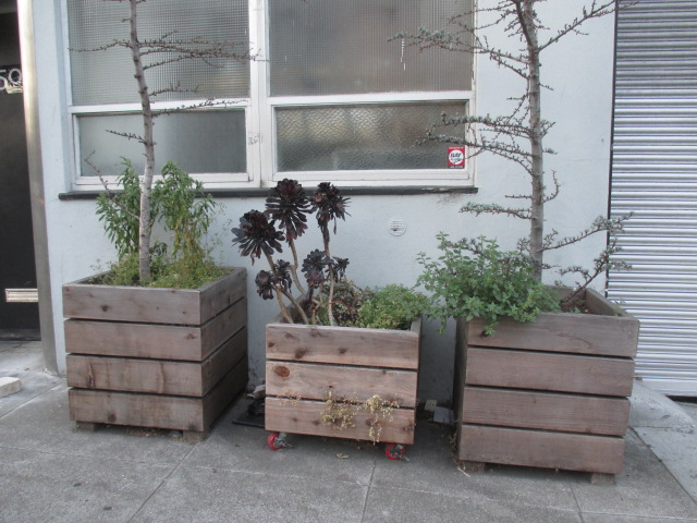 Wooden Planters Photo by Kathleen Narruhn