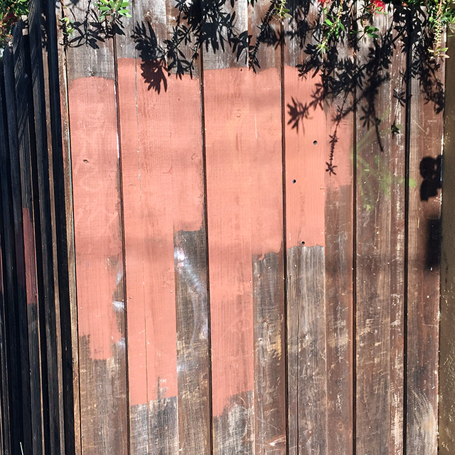 Fence. Photo by Jane Segal