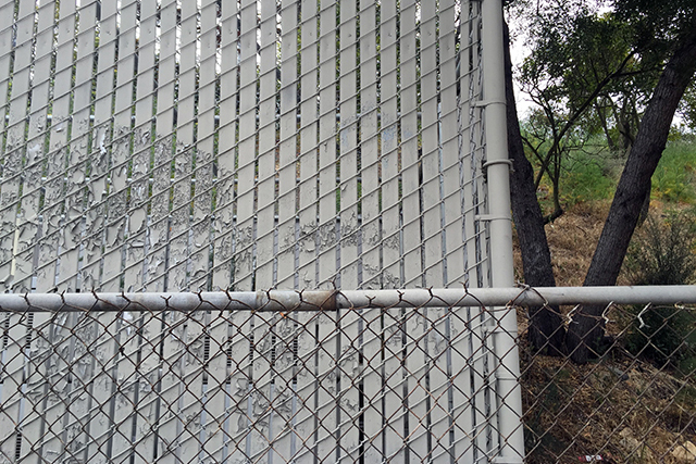 Between fence and nature. Photo by Lydia Chávez