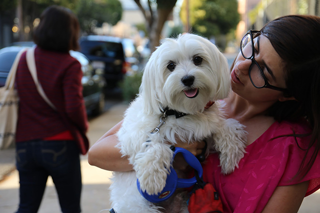 Terese Waisberg holds Zeus, who doesn't realize he's going in to get fixed today. Photo by Janet Kornblum
