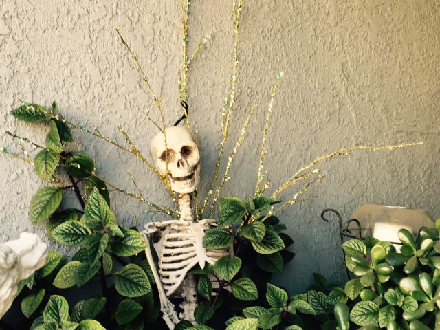 Photo Essay: The Mission Prepares for Halloween