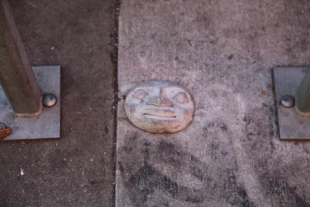 SNAP: An Unfamiliar Face
