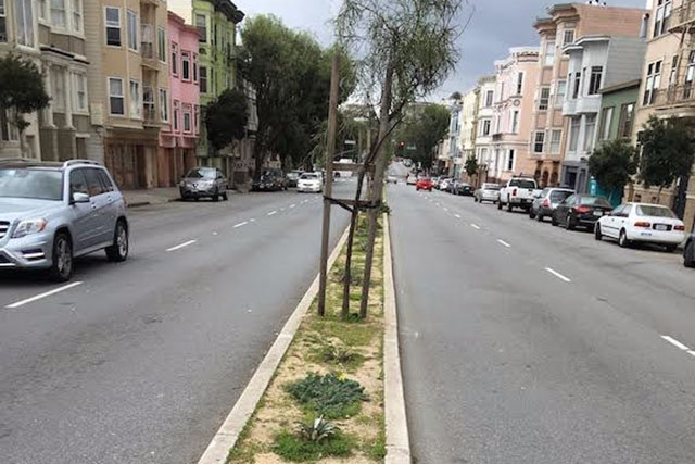 Guerrero St. Median To Get Love from Community