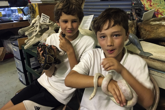 Two Everett Middle School students get friendly with the permanent residents of the Mission Science Workshop. Photo by Laura Waxmann
