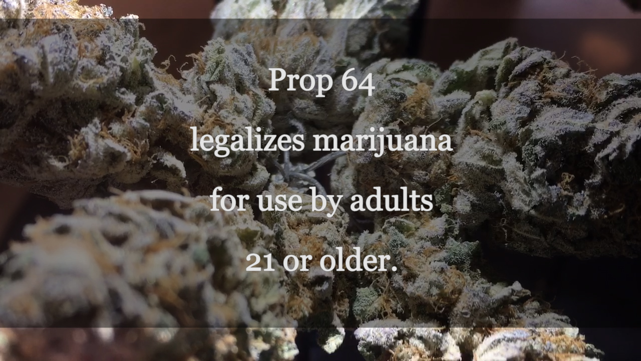 VIDEO: Prop Talks Pot