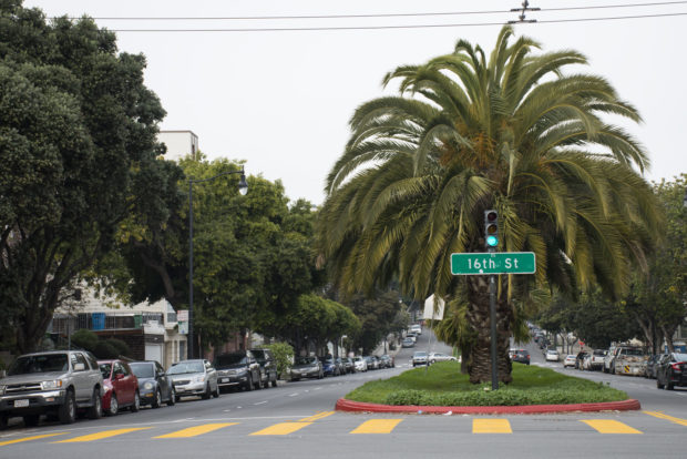 The Dolores Street median. Photo by Lola M. Chavez