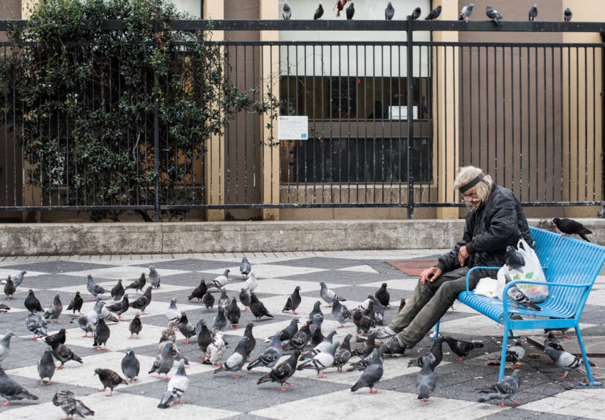 Homeless poet and bird lover John 'Swan' Ratliff is back on the street — and suffering