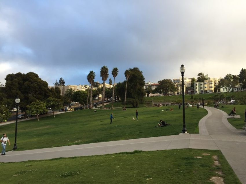 Stabbing at Dolores Park leaves one injured, four arrested