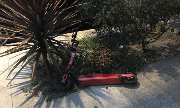 A Scoot Is Dumped In Your Yard. Now What?