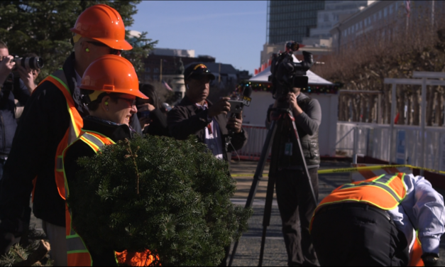 Christmas trees shredded into mulch in media-friendly spectacle (with video)