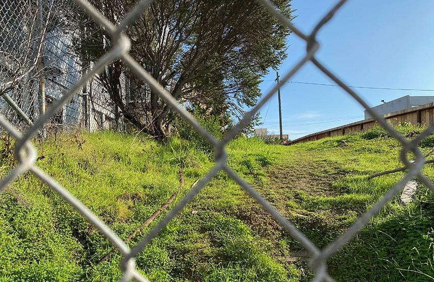Snap: Field of dreams on Capp Street