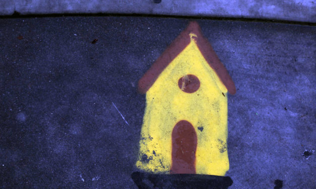 Snap: What birds paint on sidewalks