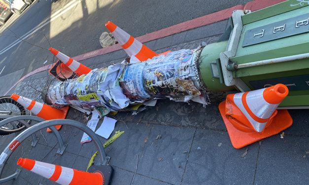 Snap: Felled public art post