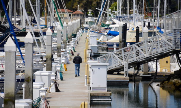 Photo essay: Day 45 of shelter-in-place, the Marina