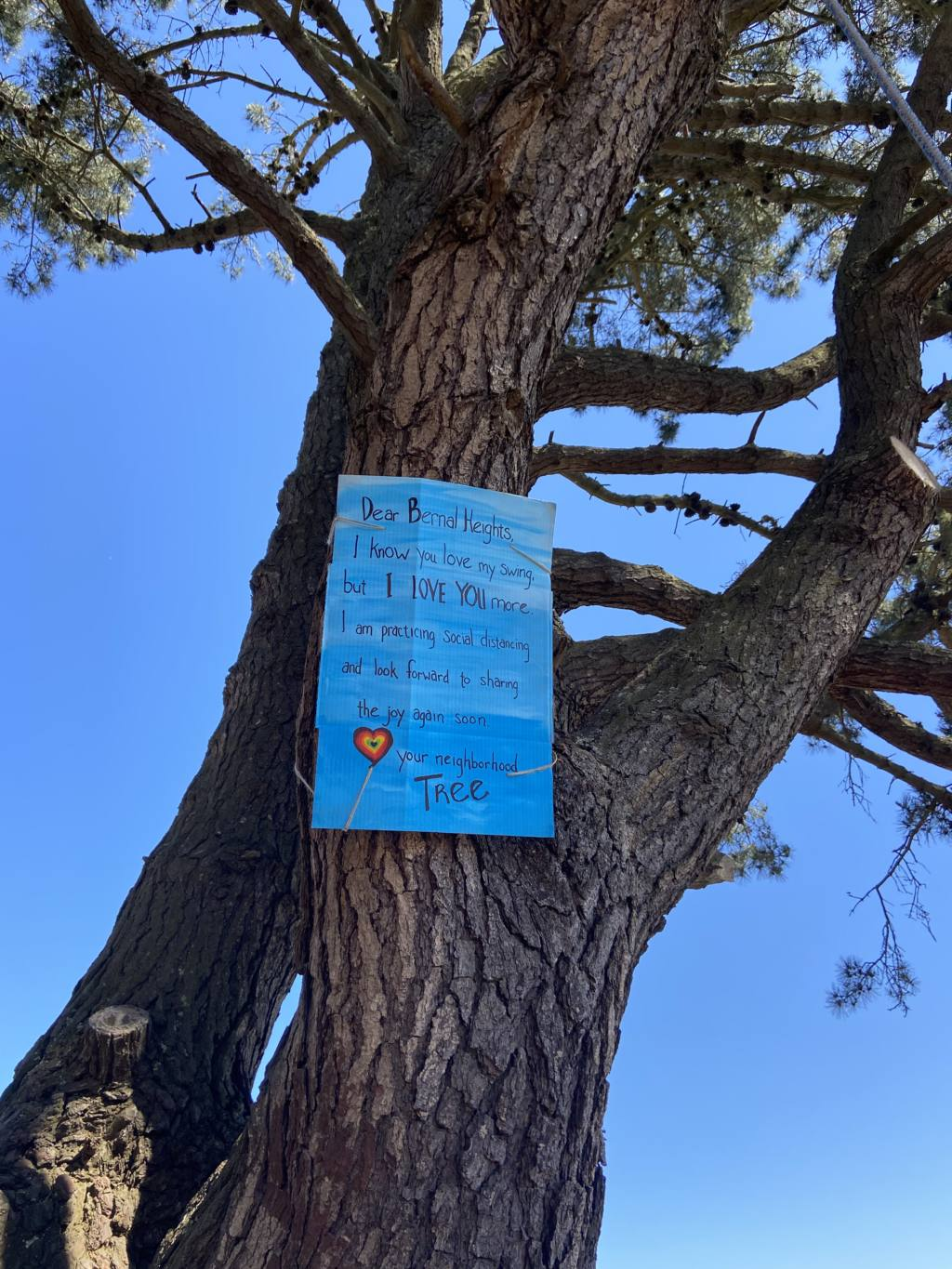 Snap: Note from a tree