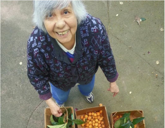woman with boxes of loquat