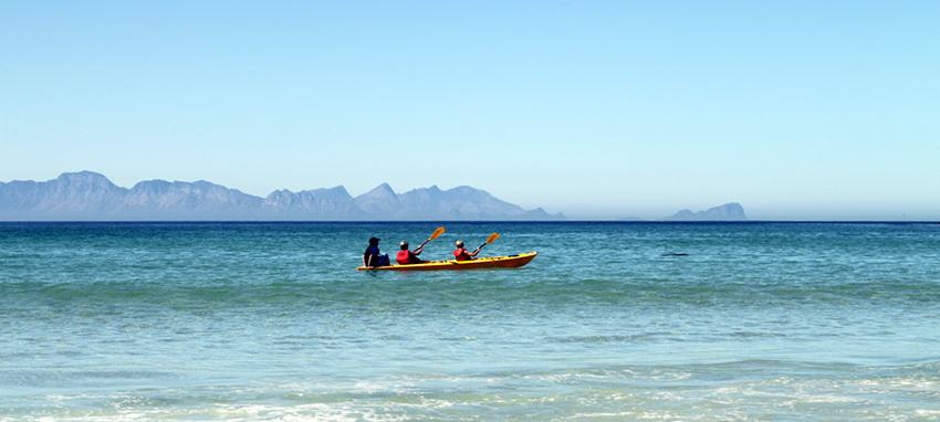 afrique du sud-flowcomm-flickr