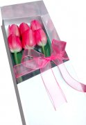 Caja de 6 Tulipanes