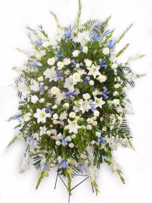 Perestal Iris-Azucena