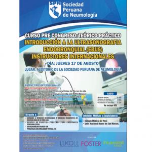Introducción a la Ultrasonografía Endobronquial (EBUS)