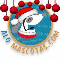 https://s3.amazonaws.com/mitiendape/uploads/tienda_003600/tienda_003600_1954fb3db063854f4648ad15f4e7a6b0aed09deb_logo_small_85.jpg