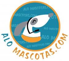 https://s3.amazonaws.com/mitiendape/uploads/tienda_003600/tienda_003600_63076a05feec064f2179bc0011bc4b4a8a51882e_logo_small_85.jpg