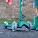 Wheel Whizzer Buho