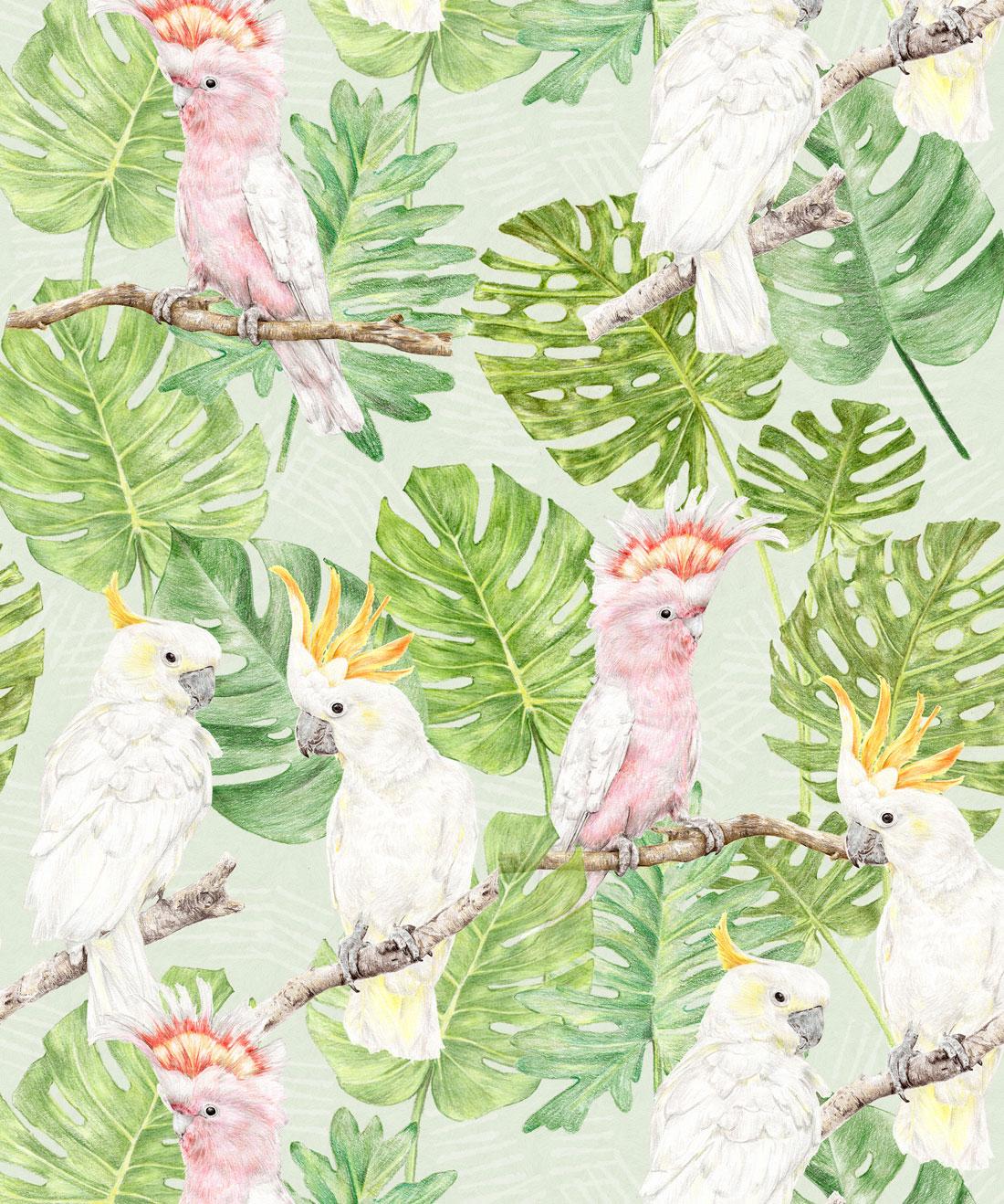 Tropical Cockatoos Wallpaper