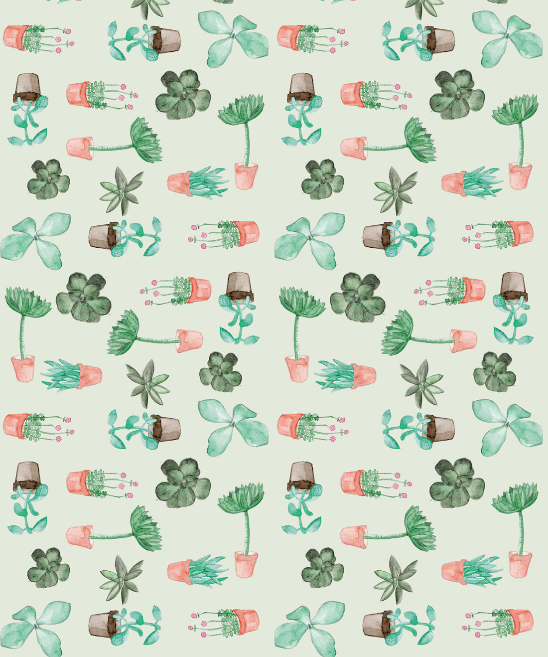 Succulents Removable Wallpaper Cactus Botanical Milton King