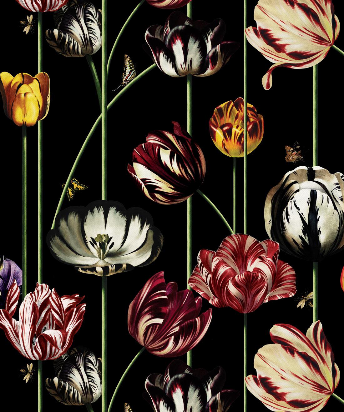 Tulipa Large Scale Floral Wallpaper Bold Unique Milton King